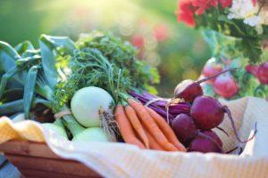 Мы есть то, что едим: подбираем правильное питание для здорового образа жизни