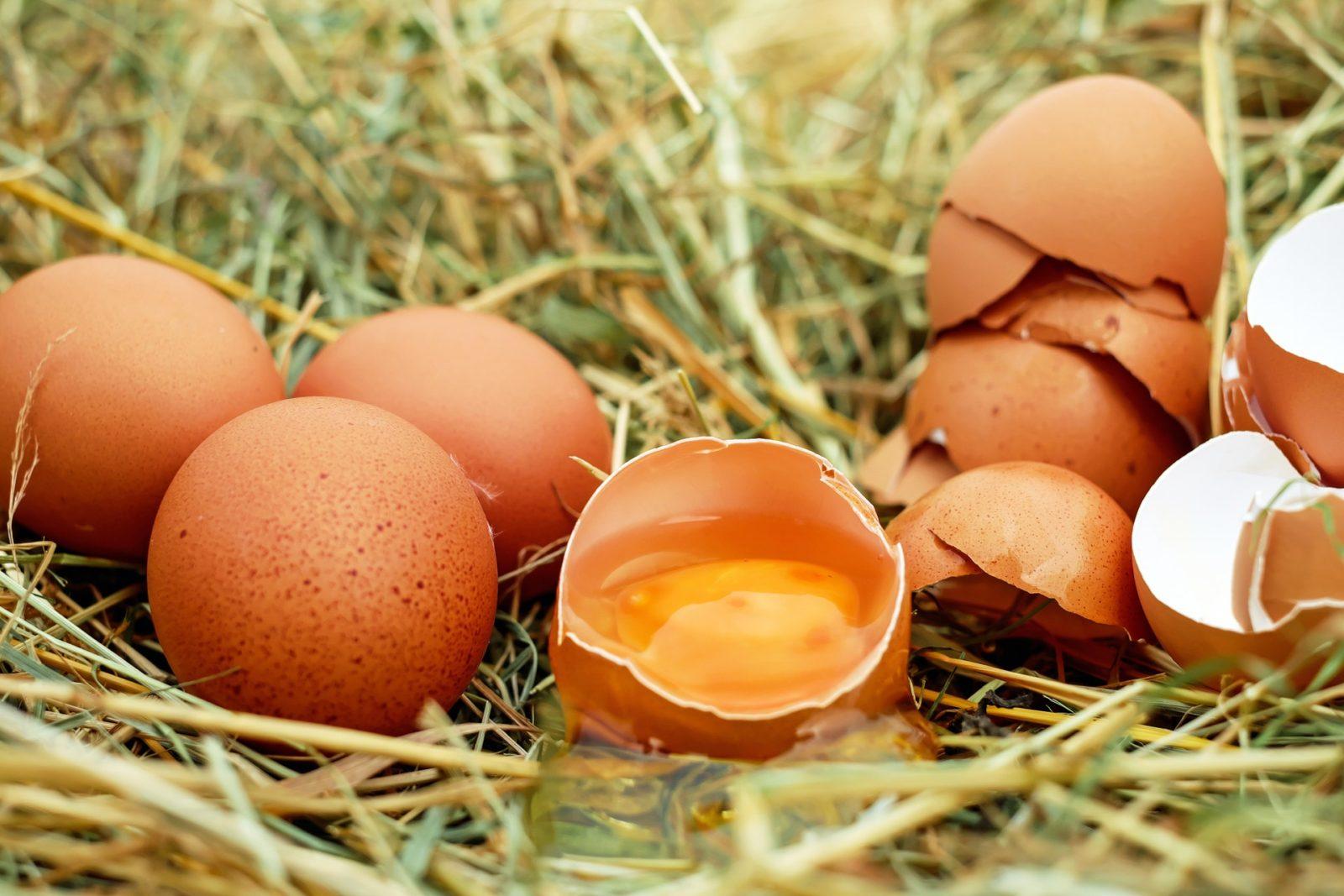 Можно ли на диете есть жареные яйца