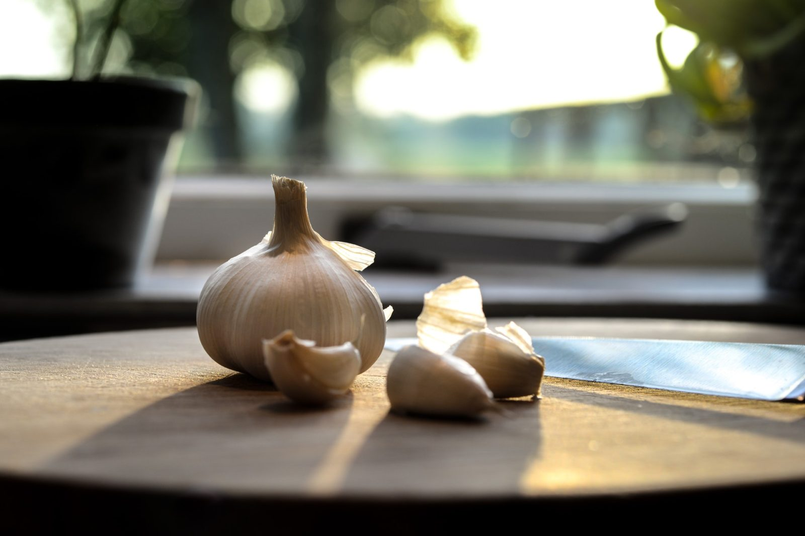 Продукты и способы для чистки организма: чеснок, свекла, сорбенты или голодание