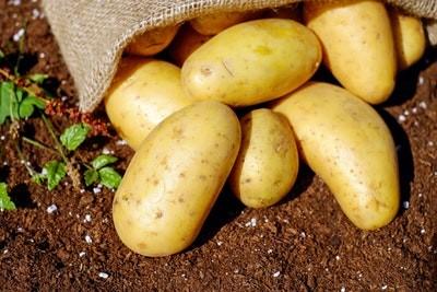 Жареная картошка на сковороде - 8 вкусных рецептов