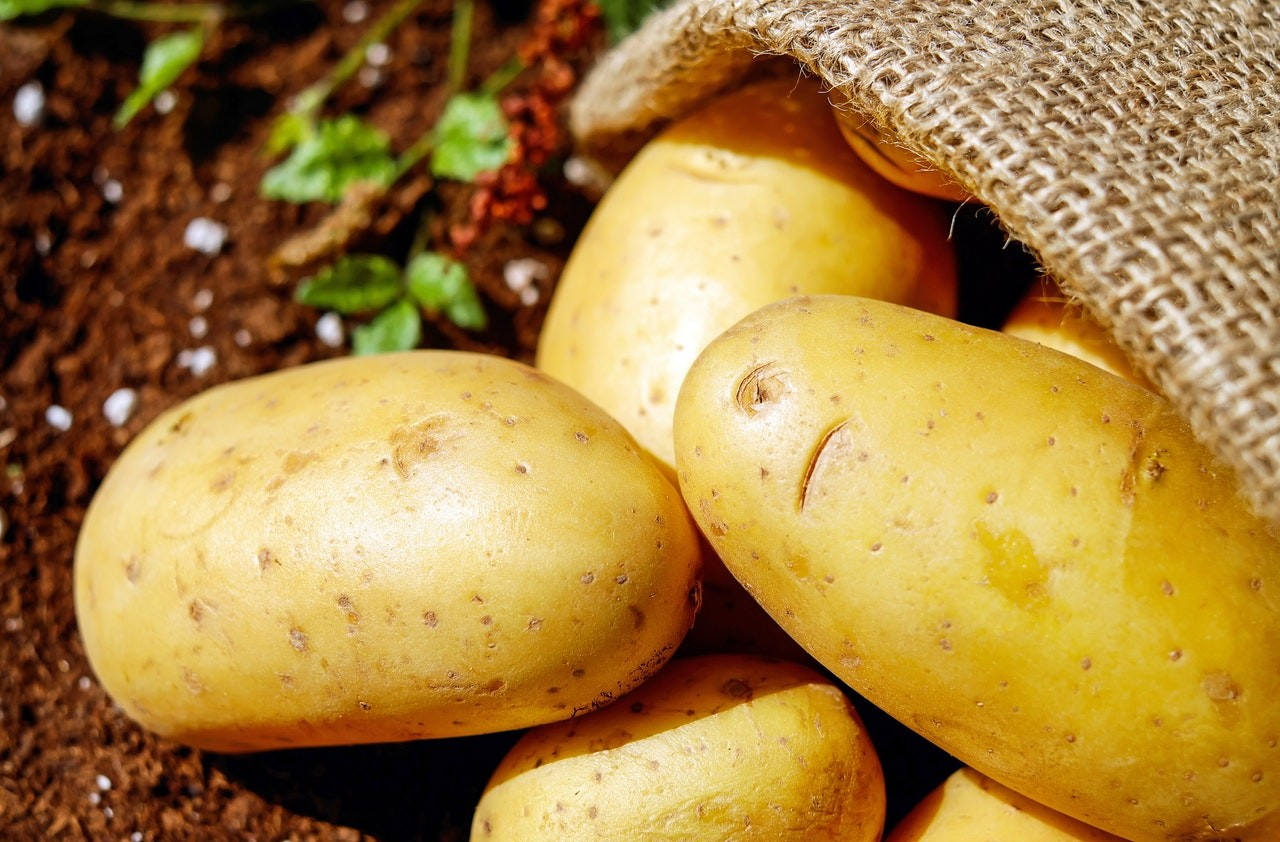 Исключать ли картофель во время диеты