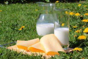 Молочные продукты при похудении: польза или вред