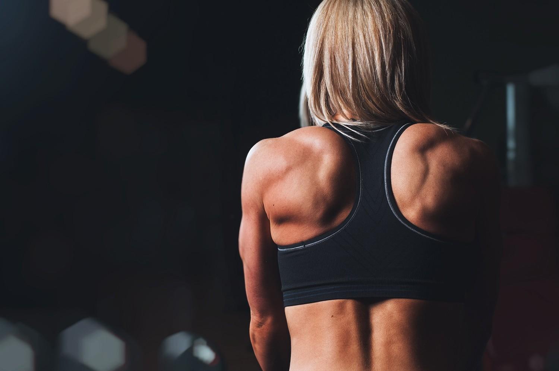 Тренировка спины и бицепса в один день, программа тренировки