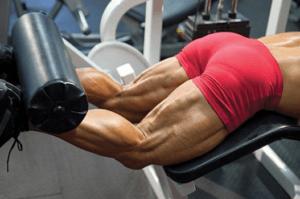 Развития ягодиц у мужчин: самые эффективные упражнения
