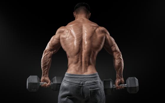 Развитие спины в домашних условиях: возможности и упражнения